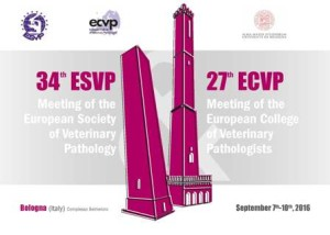 34th ESVP and the 27th ECVP Meeting