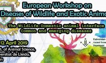 European Workshop on Diseases of Wildlife and Exotic Animals