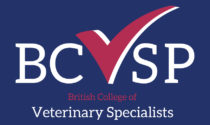 BCVS – Early Career Workshop